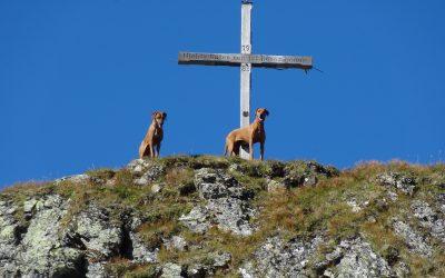 Wunderbare Fotos von Kyra und Anouk aus den Bergen Tirols