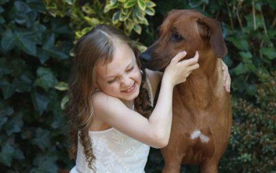 June – ein Familienhund :)