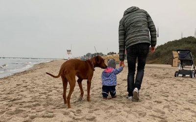 Der Ramses und seine Familie