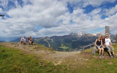 Angus in den Bergen von Wolkenstein